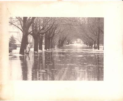 1979 Flood, Penfield Avenue
