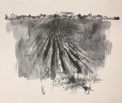 Mississippi 1964: Landscape