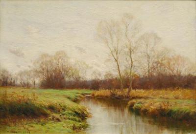 Brook in Spring