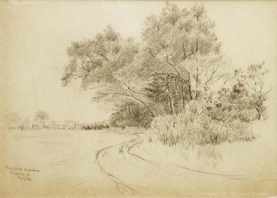 Pine Creek Meadow Study