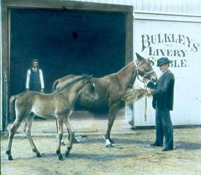 Bulkley's Livery Stable
