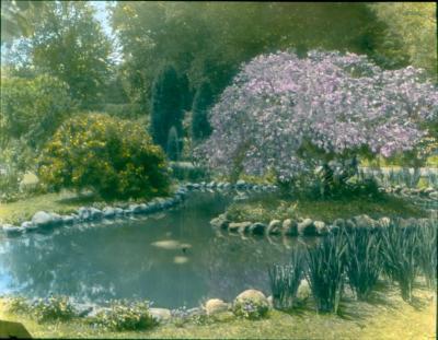 Burr Homestead Pond