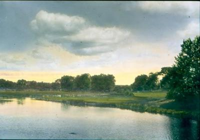 Turney Creek Looking North
