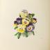 """Publication -""""Floral Bells"""" by Mrs. C.M. Badger"""